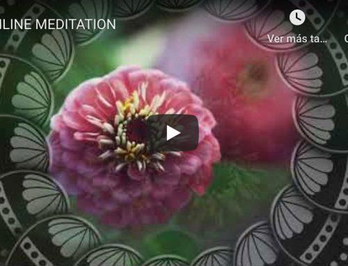 MEDITATION – streaming 04-04-2020